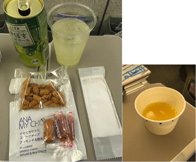 ANA(全日空)国内線、264便、福岡⇒羽田搭乗レポート(動画有り)