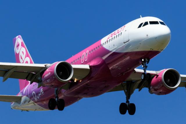 LCC(格安航空)のピーチで北海道に行くと道内の移動もお得